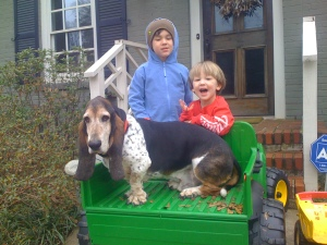 Basset Hound with children